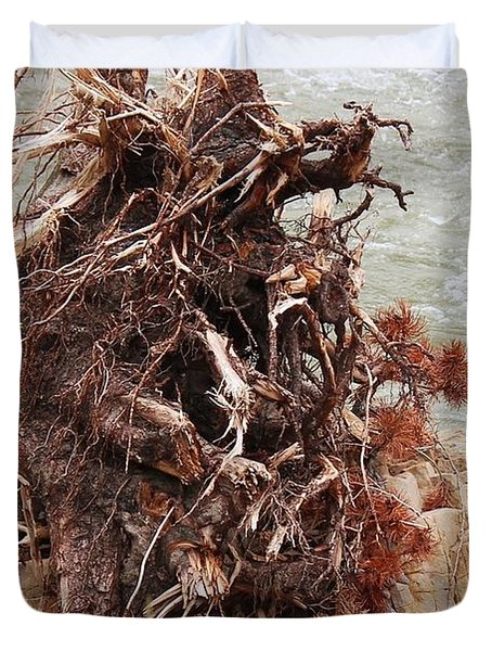 Duvet Cover featuring the photograph Ravaged Roots by Ann E Robson