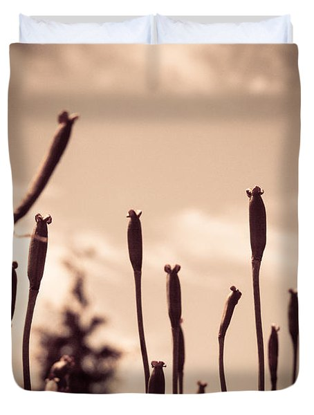 Flowers Reaching For The Sky Duvet Cover by Brian Caldwell