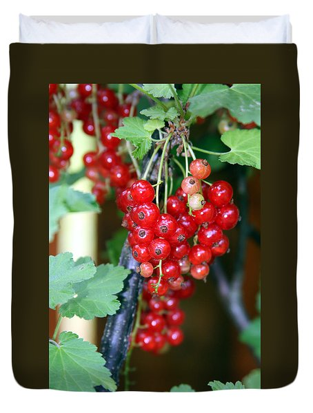 Ready To Eat Berries Duvet Cover by Vadim Levin