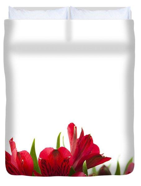 Red Alstroemeria Duvet Cover by Anne Gilbert