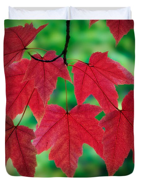 Red And Green Duvet Cover by Inge Johnsson