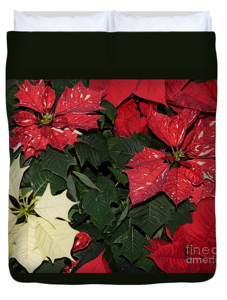 Red And White Poinsettia Duvet Cover by Kathleen Struckle