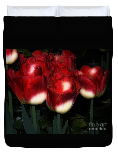 Red And White Tulips Duvet Cover by Kathleen Struckle