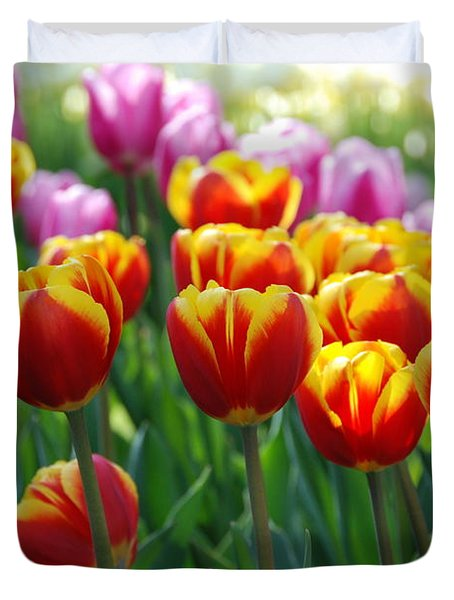 Duvet Cover featuring the photograph Red And Yellow Tulips  by Allen Beatty