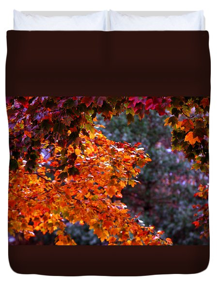 Red Autumn Leaves Duvet Cover by Andy Lawless