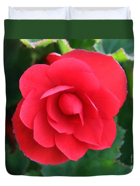 Red Begonia Duvet Cover by Sergey Lukashin