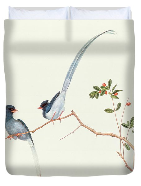 Red Billed Blue Magpies On A Branch With Red Berries Duvet Cover by Chinese School