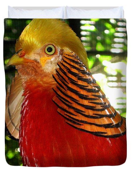 Red Bird Duvet Cover by Pamela Walton