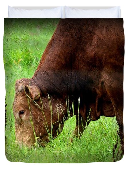 Red Brangus Bull Duvet Cover by Maria Urso