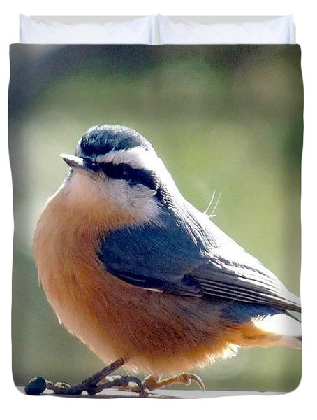 Red-breasted Nuthatch Duvet Cover