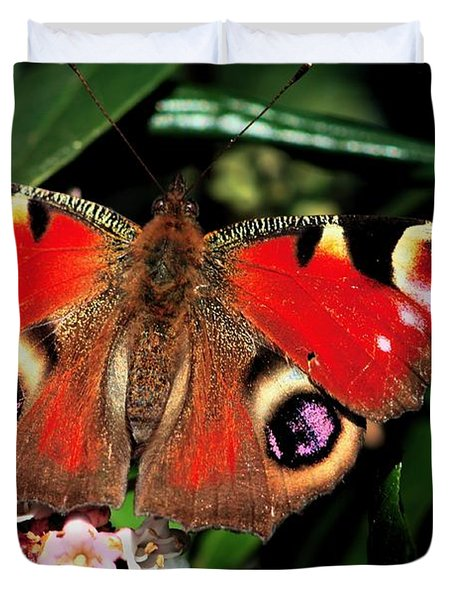 Red Butterfly In The Garden Duvet Cover