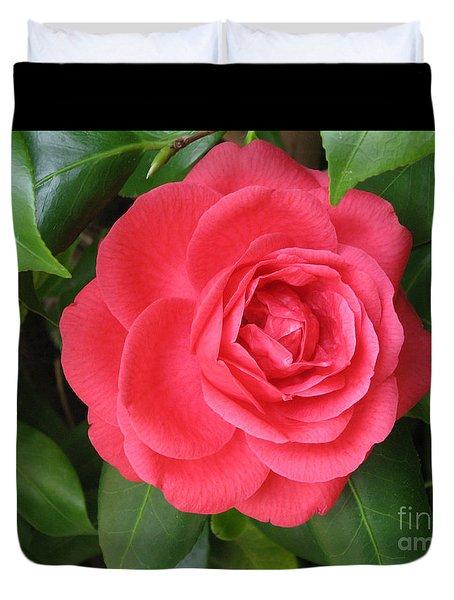 Red Camellia At Laguna Niguel Duvet Cover