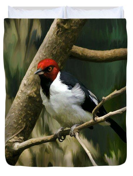 Red-capped Cardinal Duvet Cover by Adam Olsen