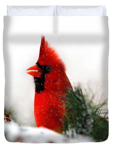 Red Cardinal Duvet Cover