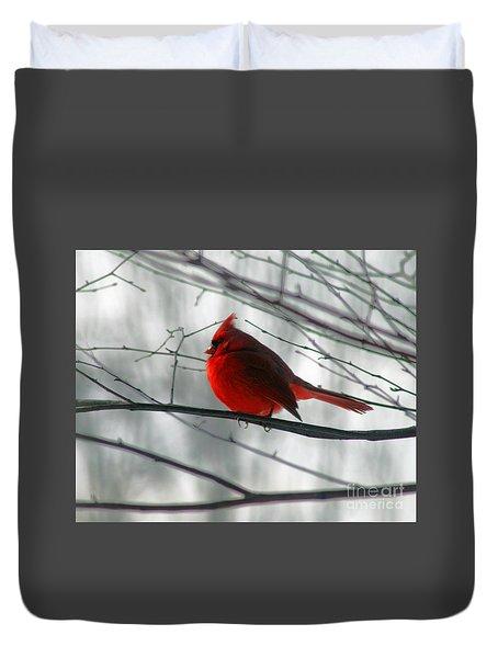 Red Cardinal On Winter Branch  Duvet Cover by Karen Adams
