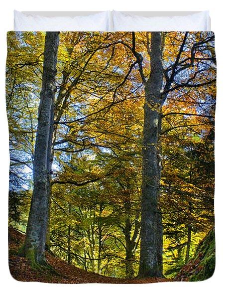 Red Carpet In Reelig Glen During Autumn Duvet Cover