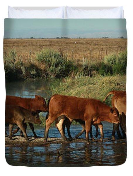 Red Cattle Duvet Cover