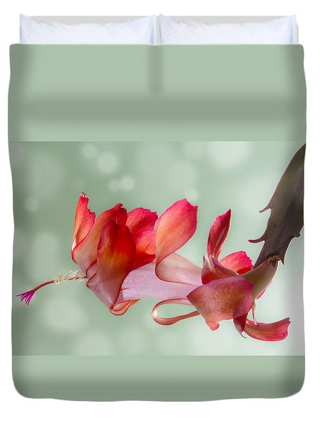 Red Christmas Cactus Bloom Duvet Cover