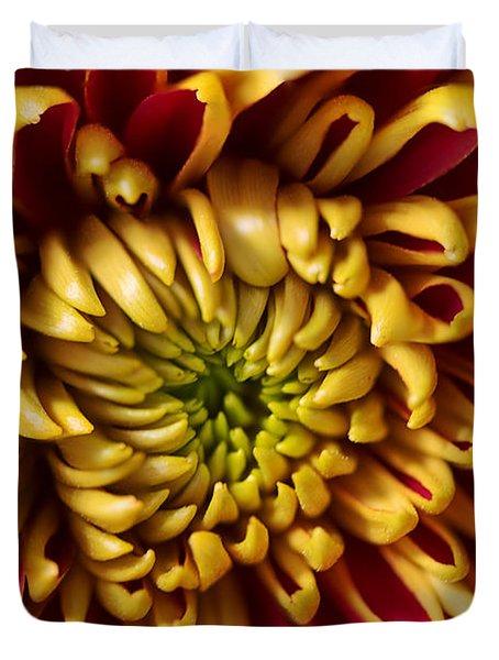 Red Chrysanthemum Duvet Cover by Matt Malloy