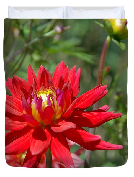 Red Dahlia Duvet Cover