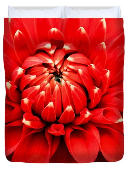 Duvet Cover featuring the photograph Red Dahlia With White Tips by E Faithe Lester