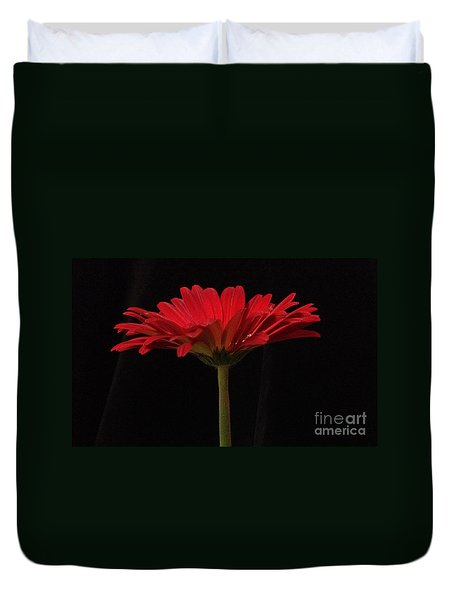 Red Daisy 4 Duvet Cover