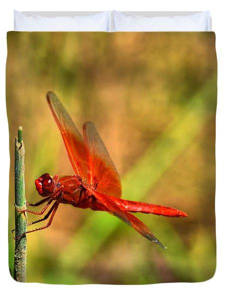 Red Dragon Dreams Duvet Cover