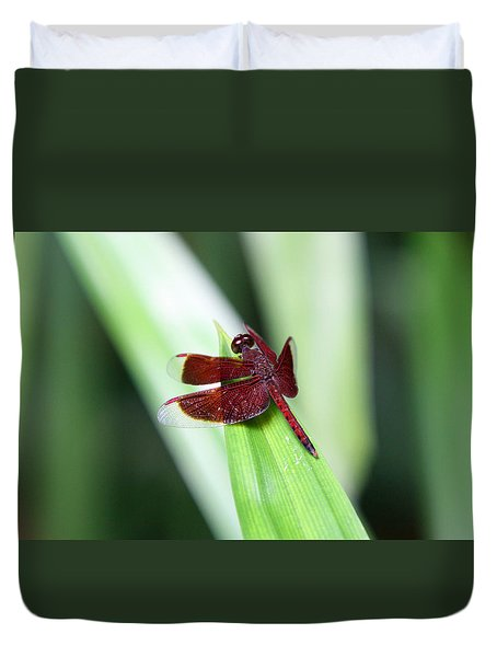 Duvet Cover featuring the photograph Red Dragon by Shoal Hollingsworth