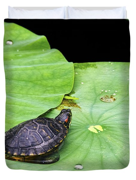 Red-eared Slider Duvet Cover by Greg Reed