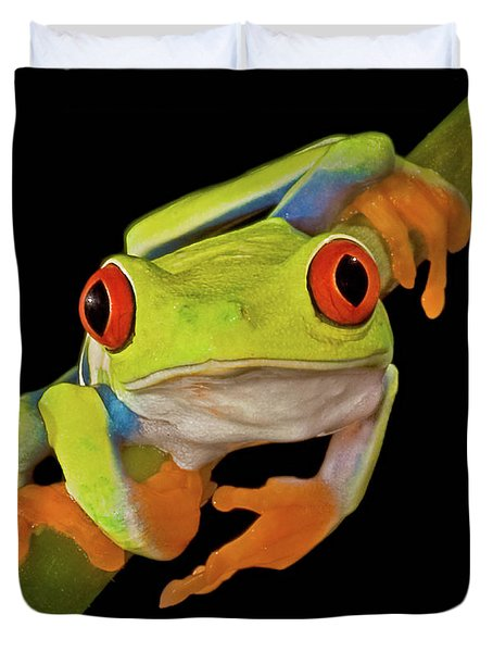 Red Eye Tree Frog Duvet Cover by Susan Candelario