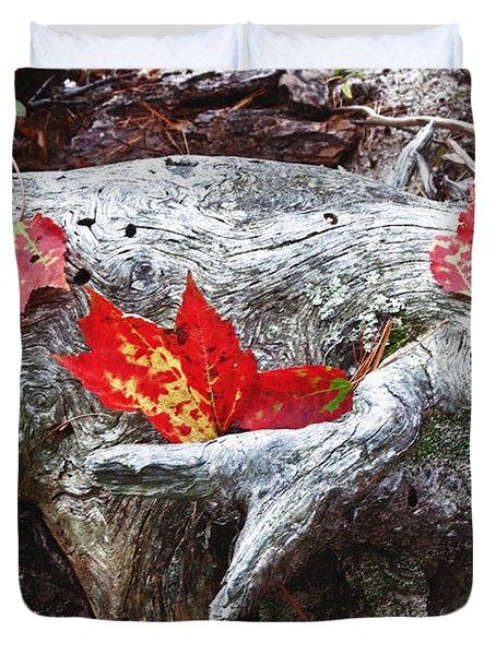 Red Fall Against Grey Duvet Cover