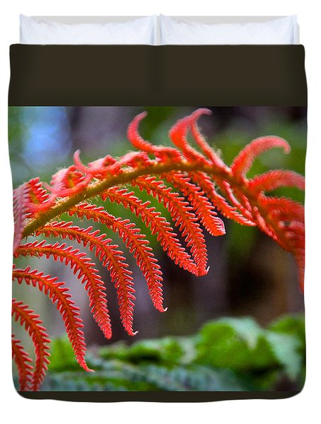 Autumn Fern In Hawaii Duvet Cover by Venetia Featherstone-Witty