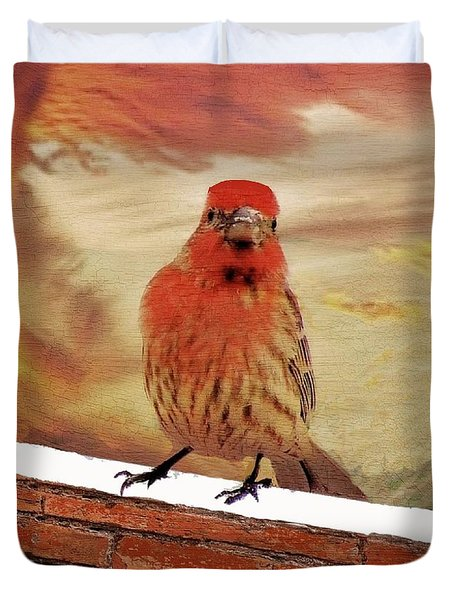 Red Finch On Red Brick Duvet Cover by Janette Boyd