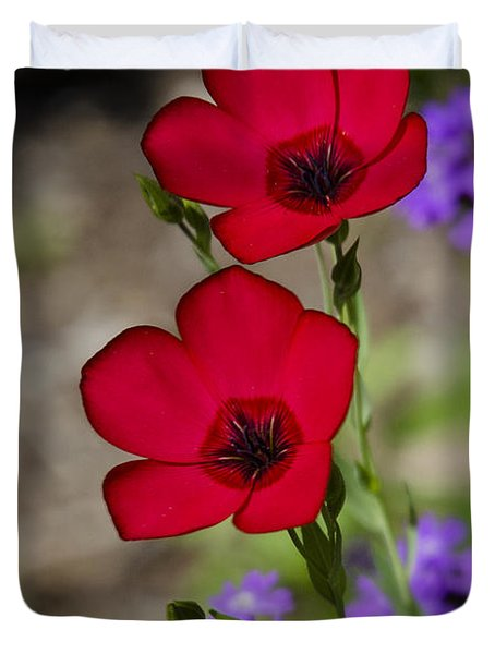 Red Flax  Duvet Cover by Saija  Lehtonen
