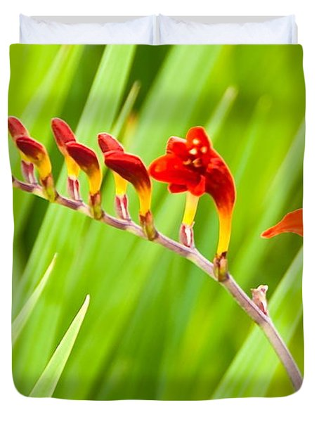 Red Flower Family Duvet Cover by Dee Dee  Whittle