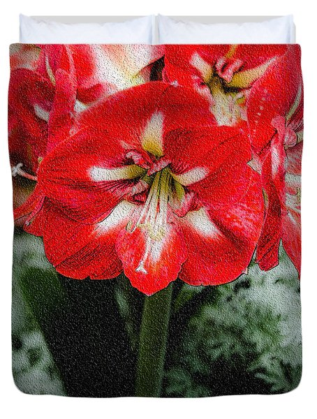 Red Flower With Starburst Duvet Cover by Crystal Wightman