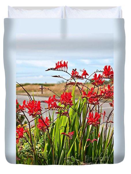 Red Flowers Crocosmia Lucifer Montbretia Plant Art Prints Duvet Cover