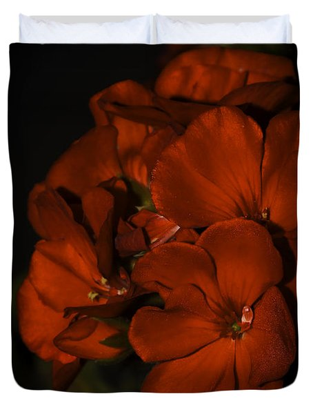 Duvet Cover featuring the photograph Red Flowers In Evening Light by Lucinda Walter