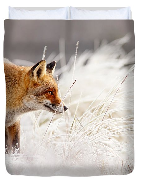 Red Fox And Hoar Frost _ The Catcher In The Rime Duvet Cover