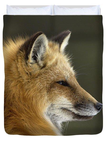 Sly Red Fox Duvet Cover