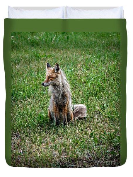 Red Fox Portrait Duvet Cover by Robert Bales