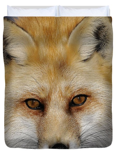 Red Fox Portrait Duvet Cover by Rodney Campbell