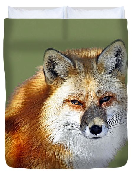 Red Fox Duvet Cover by Rodney Campbell