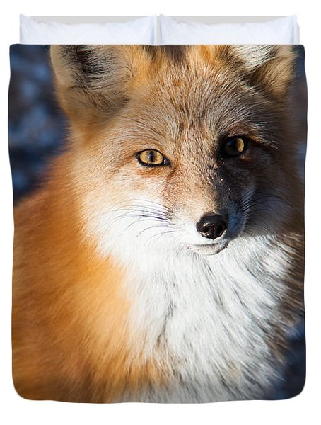 Red Fox Standing Duvet Cover