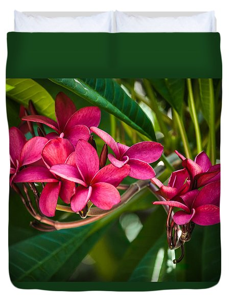 Red Frangipani Flowers Duvet Cover