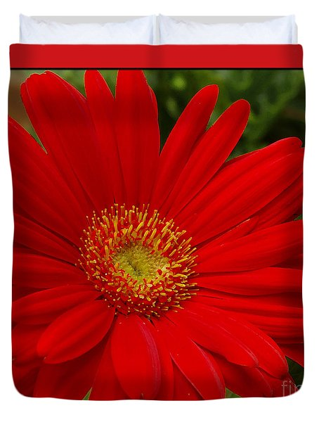 Red Gerbera Daisy Duvet Cover