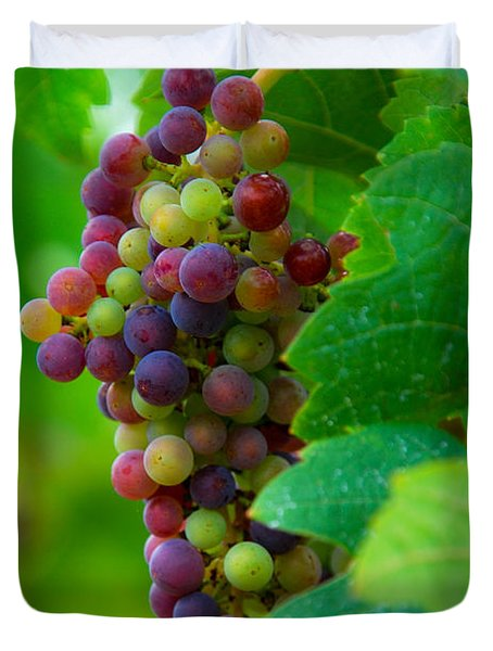 Red Grapes Duvet Cover by Hannes Cmarits