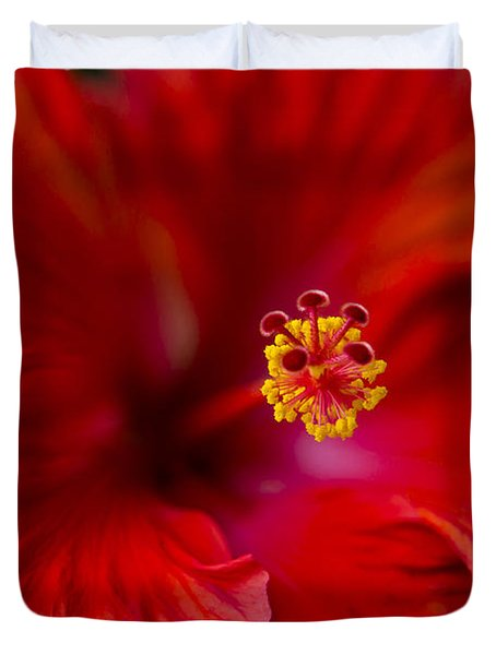 Red Hibiscus Duvet Cover by Eduard Moldoveanu