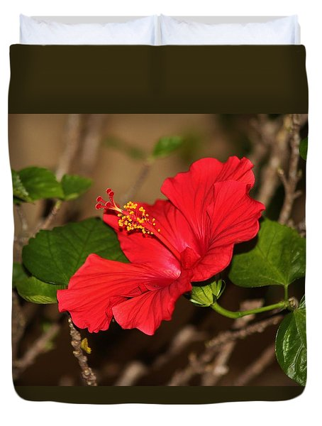 Red Hibiscus Flower Duvet Cover