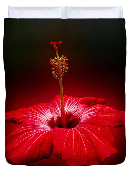 Red Hibiscus Tropical Flower Wall Art Duvet Cover